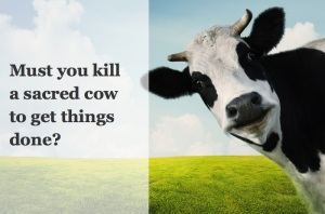 cow-don-not-kill